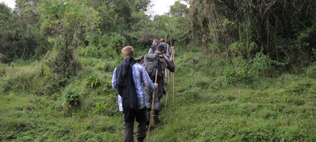 Mgahinga Hike